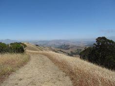 Sibley Volcanic Regional Park, California