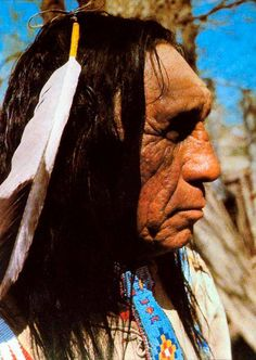 lame deer cougar women But some disturbing data shows that as women, if we want to be attractive as we age, the best thing we can do is really just not age past 20.
