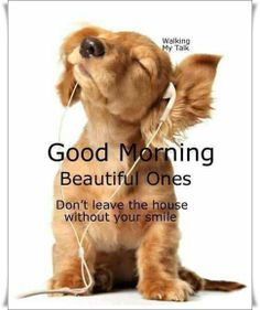 Image result for good night quotes bling animals