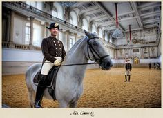 Lipizzaner stallion and rider--Winter Riding School.  MUST visit there someday!  Photo taken by: Ken Kaminesky