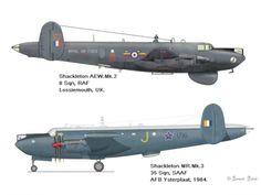 AVIÕES MILITARES: Avro 696 Shackleton Avro Shackleton, Royal Australian Air Force, Navy Aircraft, Military Jets, Royal Air Force, Royal Navy, Wwii, Plane, Fighter Jets