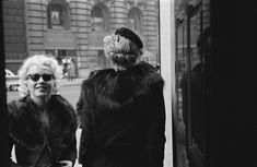 Marilyn photographed by Ed Feingersh, 1955.