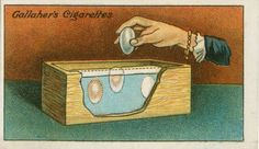 Gallaher's Cigarettes tip cards