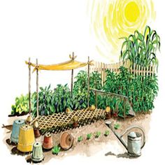 Keeping Crops Cool During Hot Weather: 13 Ways to Beat the Heat - Organic Gardening - MOTHER EARTH NEWS