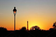 Tuileries Garden by Avelina on @creativemarket