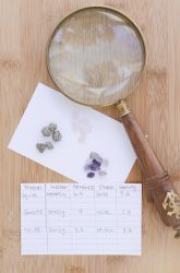 Identifying Rocks and Minerals for Kids | Education.com. Sam Science Fair Experiment