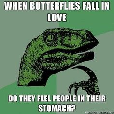 When butterflies fall in love, do they feel people in their stomach? LoL!