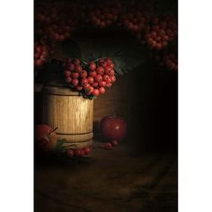>> Click to Buy << Customize vinyl cloth print 3 D red fruit dark sketch room photo studio backgrounds for wedding photography backdrops CM-5358 #Affiliate
