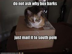 Mail to south pole