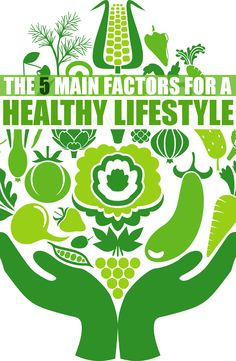THE 5 MAIN FACTORS FOR A HEALTHY LIFESTYLE | Lifestyle Thy