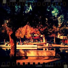 #park #picoftheday #pictureoftheday #bestoftheday #follow #love #lomo #lomography #old #vintage #spring #life #iphonesia #iphoneonly #instadaily #instagood #follow #photo #photooftheday #tree #fountain #chile #city - @ilucas_gp7- #webstagram