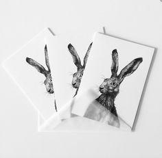 #hare #easterbunny #greetingcards #cards #illustration // #feldhase #osterhase #grußkarten #karten #zeichnung