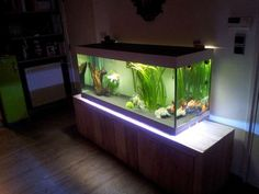 DIY Aquarium stand with led light, sow cool