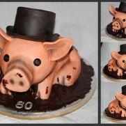 3D Pig Director