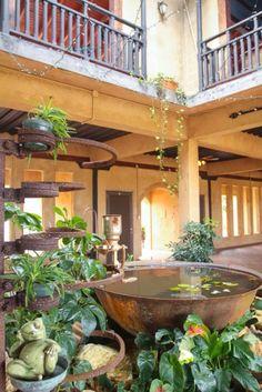 Tarde ecuestre - Hacienda Campo Rico.