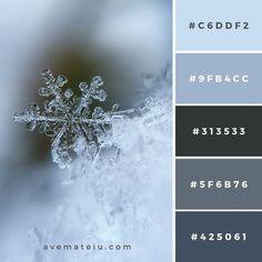 New Color Pallete on avemateiu. Hex Color Palette, Color Palate, Colour Schemes, Color Combos, Couleur Html, Couleur Hexadecimal, Web Colors, Beach Color, Design Seeds