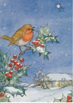 A robin sitting on a holly tree branch. Illustration by Molly Brett. Winter Illustration, Bird Illustration, Christmas Illustration, Illustrations, Christmas Bird, Vintage Christmas Cards, Christmas Windows, Nursery Paintings, Watercolor Paintings