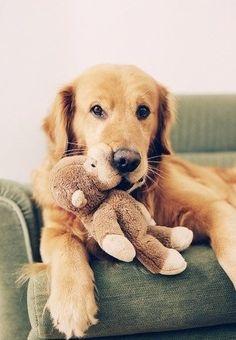 His teddy bear ~ :)