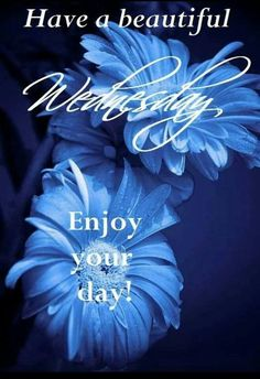 Have a beautiful Wednesday Enjoy Your Day good morning wednesday hump day wednesday quotes good morning quotes happy wednesday good morning wednesday wednesday quote happy wednesday quotes Wednesday Greetings, Wednesday Hump Day, Wednesday Wishes, Good Morning Wednesday, Good Morning Girls, Good Morning My Friend, Wacky Wednesday, Wonderful Wednesday, Thursday