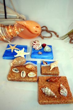 Seashell Specimen Collection Mini Canvases with Real Shells and Sea Stars Set 2 https://www.etsy.com/listing/195801528/seashell-specimen-collection-mini?ref=shop_home_active_2