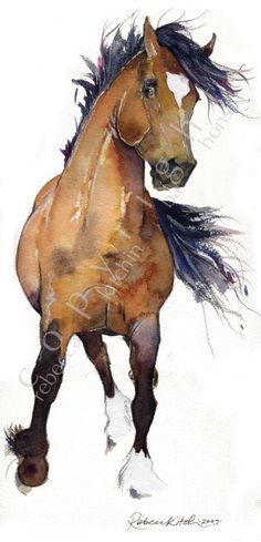 """""""Dance of the Cob"""" by Rebecca Kitchin BA Watercolor Horse, Watercolor Animals, Watercolor Paintings, Tattoo Watercolor, Watercolours, Horse Drawings, Art Drawings, Animal Sketches, Equine Art"""