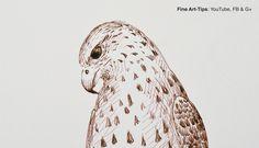 How to Draw a Falcon With Pen & Ink (Fountain Pen) - Narrated  #drawing #art #FineArtTips #falcon #fountainpen #sketch #Tutto3 #tutorial #artistleonardo #LeonardoPereznieto #Patreon   Take a look to my book here: http://www.artistleonardo.com/#!ebooks-english/cswd