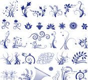 Floral elements illustration Stock Photos