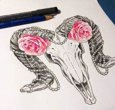 Chronic Ink Tattoo - Toronto Tattoo  Ram skull sketch done by Laurel.
