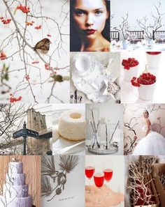 Winter Themed Wedding | Winter Cocktail Party | Winter Party Decorating Ideas