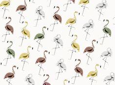 Flamingo on Behance