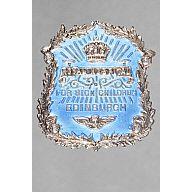 Preview Royal-Hospital-for-Sick-Children-Edinburgh-Badge