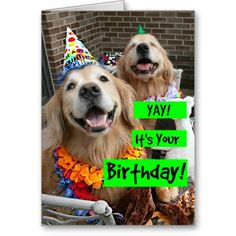 Golden Retriever Yay Its Your Birthday Greeting Card by #AugieDoggyStore