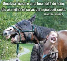 Imagens para facebook de Boa Noite engraçado cavalo sorrindo