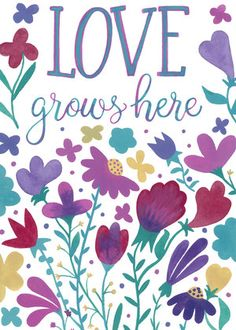 Randi Zafman/Love Grows Here represented by Liz Sanders Agency