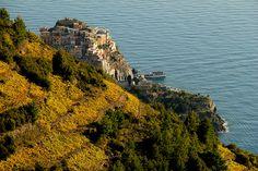 cool Dietro i terrazzamenti... Check more at http://www.discounthotel-worldwide.com/travel/dietro-i-terrazzamenti/