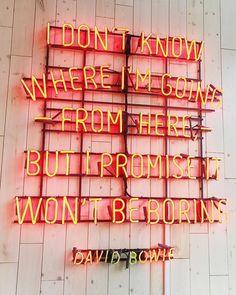 bohme + bowie
