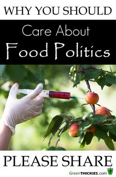 Why You Should Care About Food Politics: 5 Steps To Understanding Health Policy