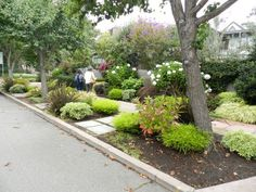 Mix It Up. Instead of landscaping one long strip that runs along the front of your house, why not redesign it as separate segments.