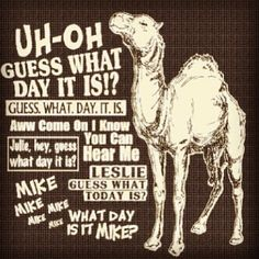 geico camel pictures | funny #geico #camel #commercial #humpday