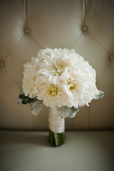 Wedding Bouquet Of White Dahlias & Dusty Miller>>>> White Dahlia Bouquet, Dahlia Wedding Bouquets, White Dahlias, Diy Bouquet, Floral Wedding, Wedding Flowers, White Flowers, Exotic Flowers, Yellow Roses