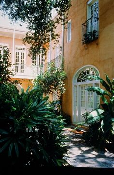 My favorite place to stay. Hot biscuits and cafe au lait for breakfast in the courtyard.