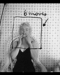 #hairstyle #costume #hollywoodhills #oldhollywood #marilynmonroe #petersneyder #fame #studio #showbiz #photography #filmphotography #modelling #art #nyc #beautycare #method #artist Hollywood Hills, Old Hollywood, Ambassador Hotel, Nyc Hotels, Cecil Beaton, Photograph Album, Film Photography, Beauty Care, Marilyn Monroe