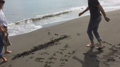 """[short clip] https://twitter.com/Getsu9_Suki/status/754646053786222592    BTS, Mirei Kiritani x Kento Yamazaki x Shohei Miura x Shuhei Nomura, J drama """"Sukina hito ga iru koto (A girl & three sweethearts)"""""""