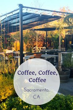 Sacramento, California was listed as the top coffee scene in the world. Check out why this up & coming city is worth you're visit.