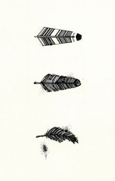 Tangled Fingers Creative Process for Art and Illustration in Feathers