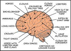 Angsten hersenen