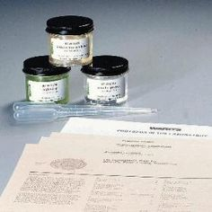 WARD'S Protist Set 1 - live specimens, culture | Ward's Science