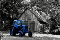 15 Black & White Photos with Selective Color Effects