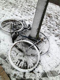 Amsterdam Amsterdam, Bicycle, Vehicles, Photography, Bike, Photograph, Bicycle Kick, Fotografie, Bicycles
