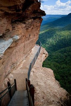 Cliffside Path, The Blue Mountains, Australia Australia Travel Destinations Brisbane, Melbourne, Places Around The World, Oh The Places You'll Go, Places To Travel, Places To Visit, Travel Destinations, Great Barrier Reef, Tasmania Australia